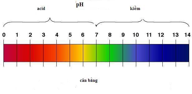 Chọn sản phẩm an toàn qua độ pH