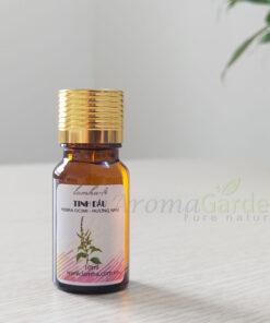 tinh dầu hương nhu nguyên chất 10ml